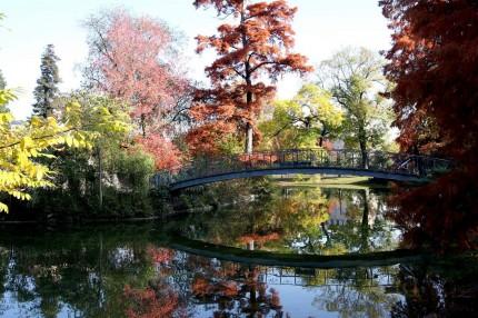 L'automne au jardin public 9