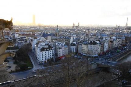 Paris depuis les tours de Notre Dame