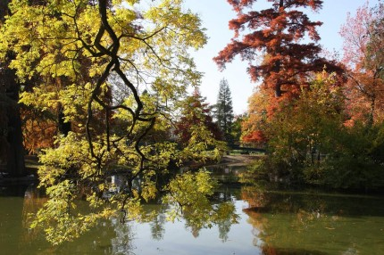 L'automne au jardin public