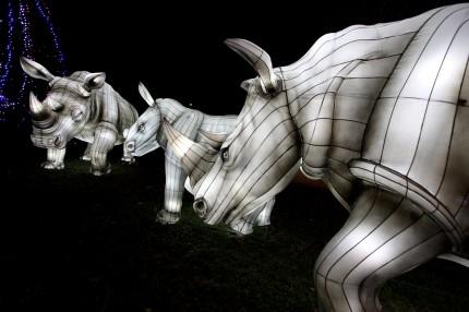 Les lanternes de Gaillac 27