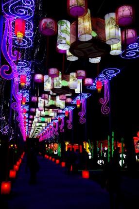 Les lanternes de Gaillac 15