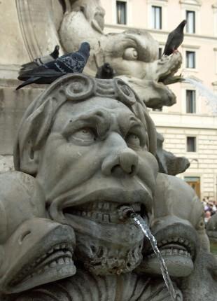 Marre des pigeons