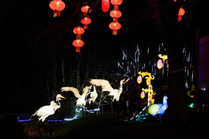 Les lanternes de Gaillac 12