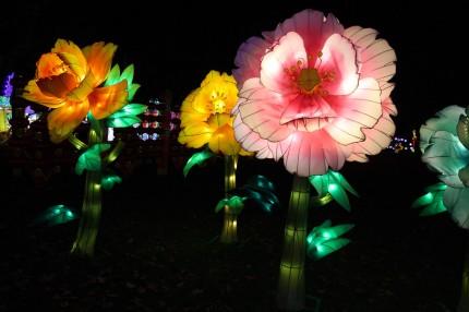 Les lanternes de Gaillac 19
